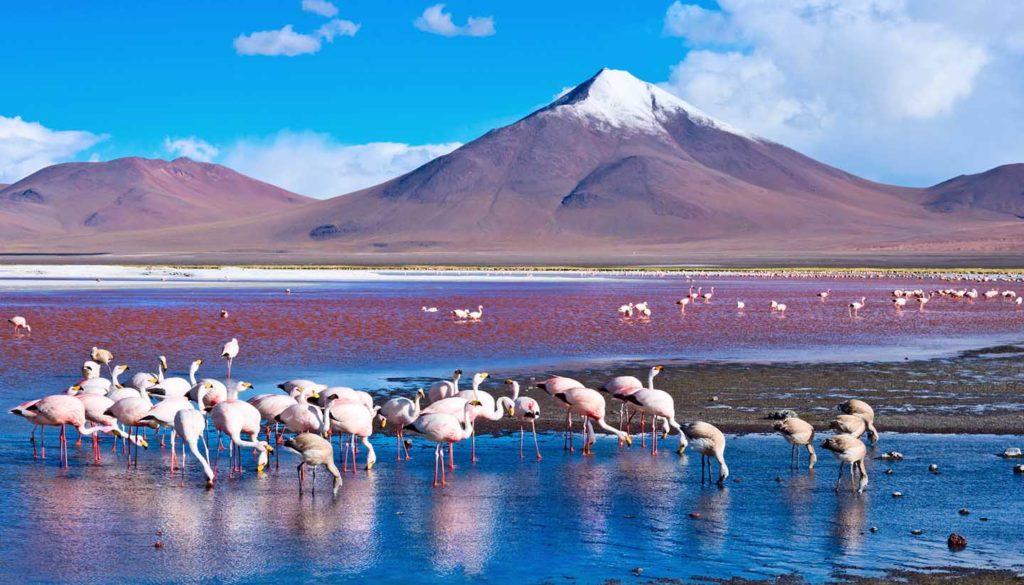2017旅遊 Travel 玻利維亞 出國上網