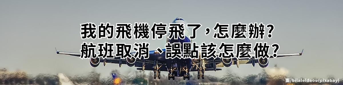 飛機停飛怎麼辦